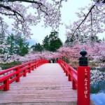 cseresznyejapan