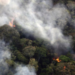 Deforestation In The Brazilian Amazon : Aerial view of smoke from forest fires