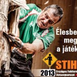 stihl_bukkzserc