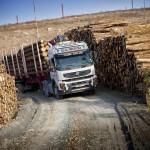 volvo_truck_forest