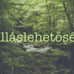kiczko_allaslehetoseg_cl
