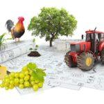 agrarmarketing