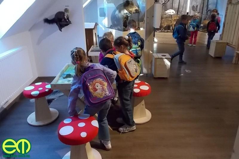 kohalmy_vadaszati_muzeum_39