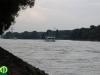donau_auen_nemzeti_park_80