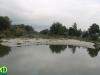 donau_auen_nemzeti_park_83