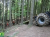 forest_romania_53