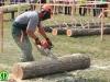 fakitermelő__25