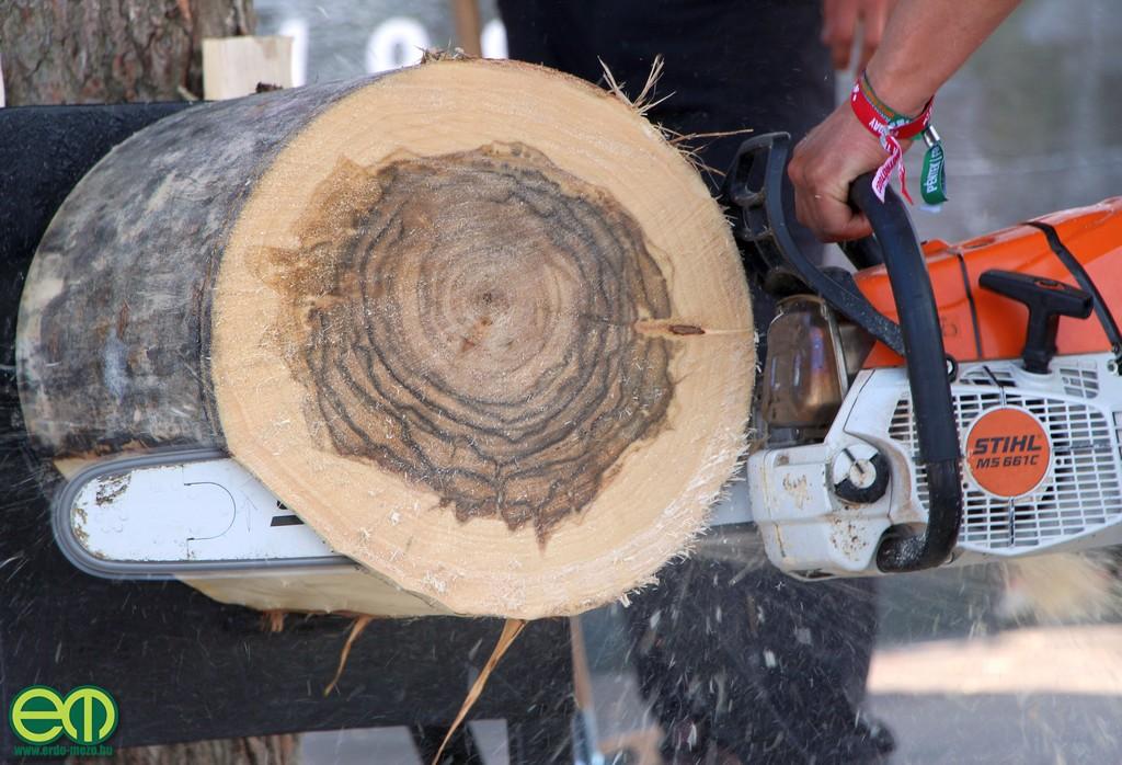 stihl_timbersports_orszagos_bajnoksag_2019_34