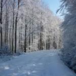 havazaserdo