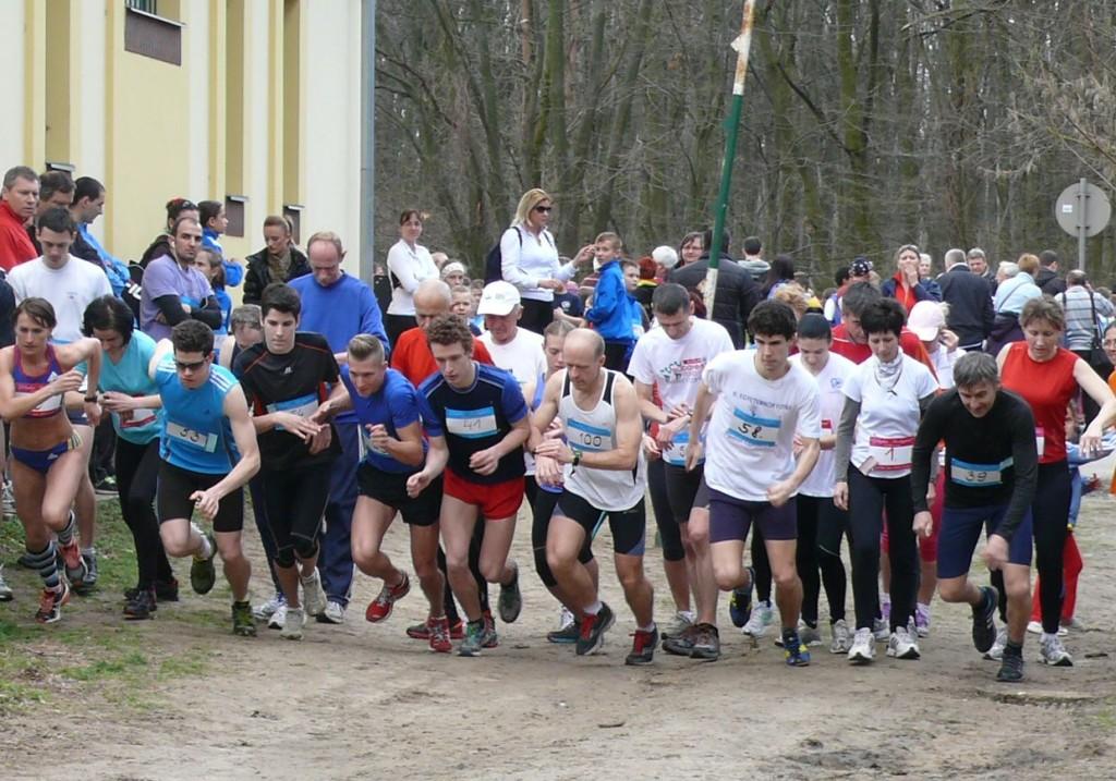 NYÍRERDŐ-futás