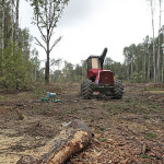 An idle tractor sits on a site of the planned highway, where trees have been felled in Khimki Forest near Moscow