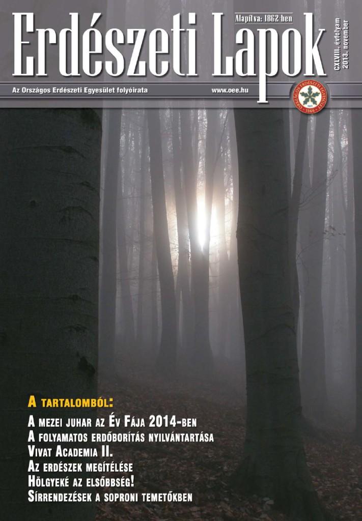 ELbori201311
