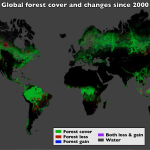 forest_cover_global.png.ashx