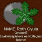 ruth_gyula_iskola