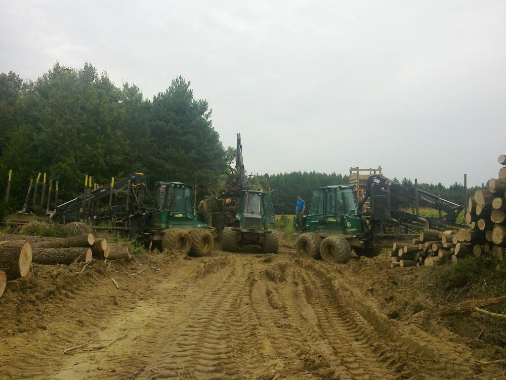 Sebők Péter: Munkában a zalai erdőben a TIMBERJACK FORVARDEREK.