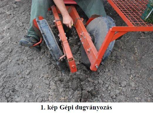 erti_fuz2_gepi_dugvanyozas