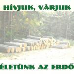 eletun_az_erdo