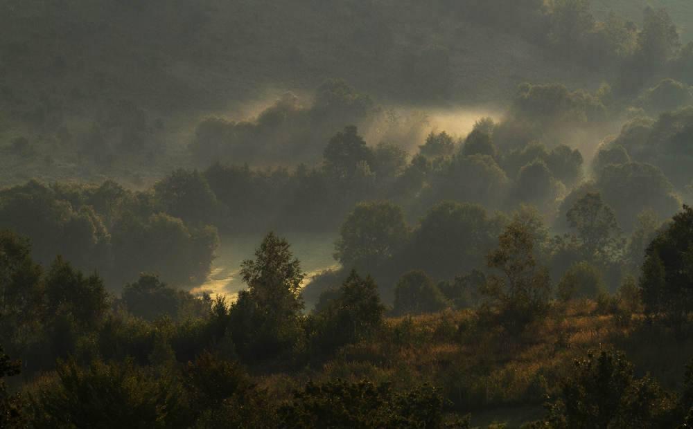Székelyföldi erdő