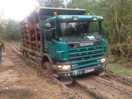 Néha a Scania rönkszállító is beragad a sárba