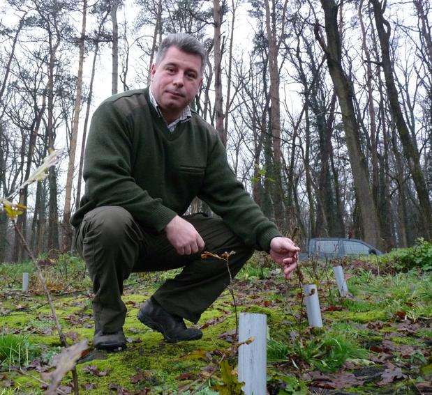 Kreiner Roland a károsítástól sikeresen megvédett kis tölgycsemetéket és a PVC-csöveket mutatja. Fotó: Honráth-Balogh Attila