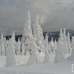 havazas_erdely_hargita