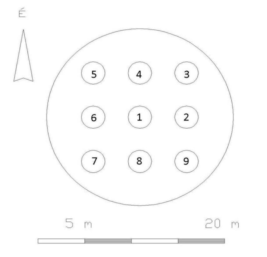 1. ábra: Mintakörök elhelyezkedése a lékben
