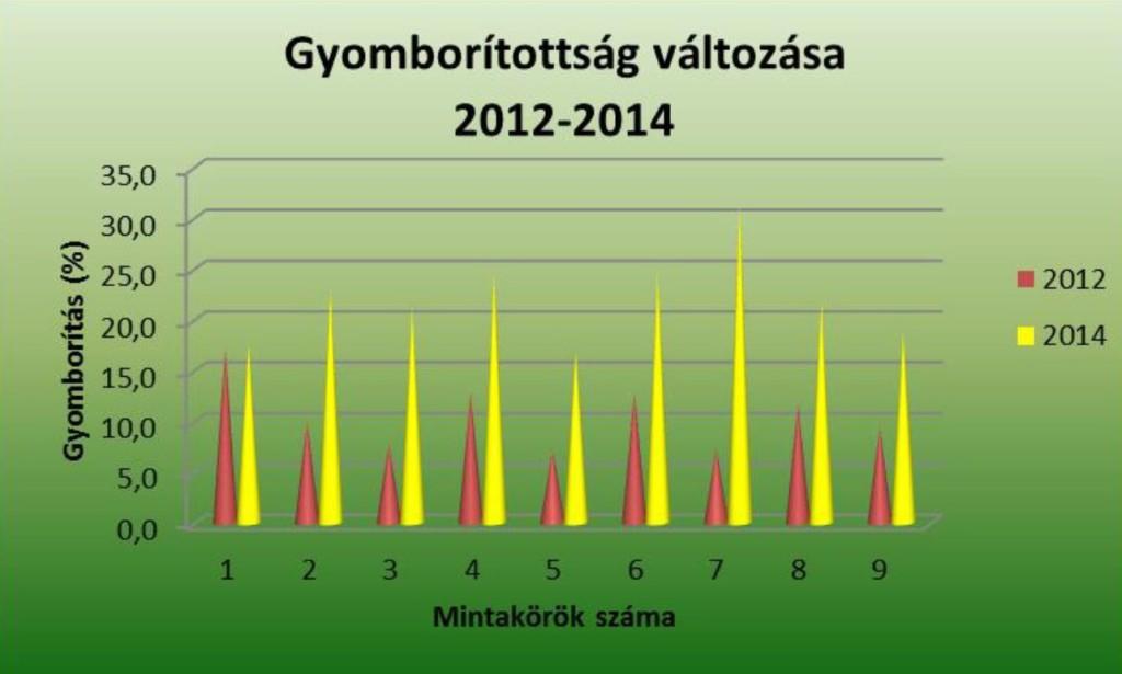 4. ábra: A mintakörök gyomborítottsága százalékban kifejezve