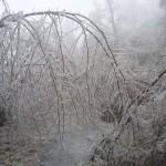nagy_hideg_hegy_9