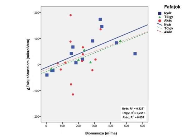 2. ábra: Az erdő biomasszája és az erdő és kontroll talaja közötti átlagos sótartalom különbség szórásdiagramja
