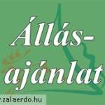 allasajanlat_zalaerdo