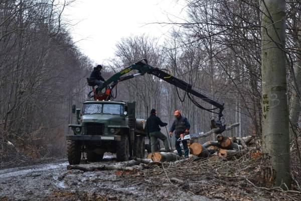 Új daru, régi rönkszállító - Fakitermelő brigád munkában