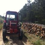Szabácsik Ferenc MTZ erdészeti traktora