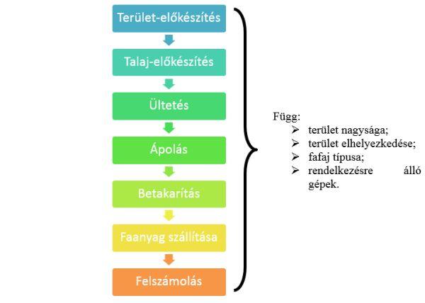 1. ábra: Az ültetvények termesztés-technológiájának műveletei