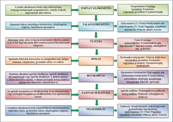 2. ábra: Az energetikai faültetvények egyes termesztés-technológiai lépéseiben megvalósítandó célok, hozzá kapcsolódó művelete és azok gépei (Czupy et al., 2012)