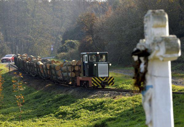Fával megrakott tehervonat halad a csömödéri kisvasút vonalán, Bánokszentgyörgy határában 2015. november 6-án.