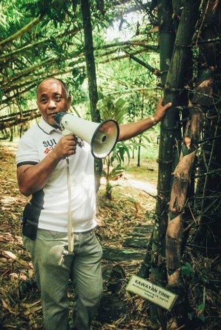 Kísérőnk a Tüskés Bambusz fafaj mellett
