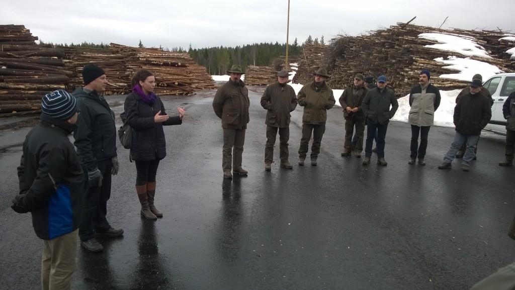 biomassza_finn