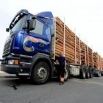 scania_orias_ronkszallito_kamion_2