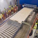 OSB-lapot gyártó üzem kezdte meg a termelést Vásárosnamén