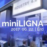 miniligna_cl