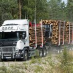 scania_forest_2
