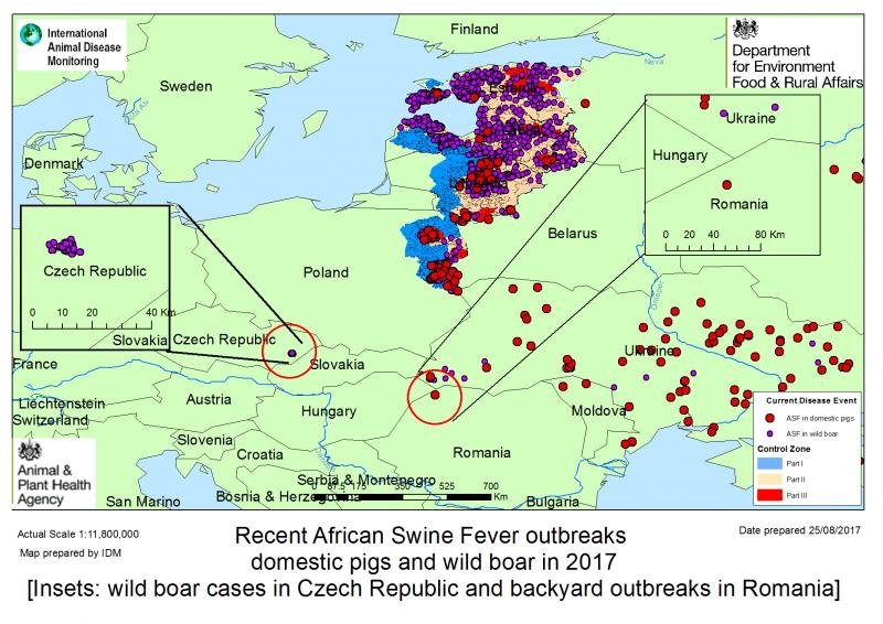 A jelenlegi helyzet Közép-Kelet Európában www.npa-uk.org.uk