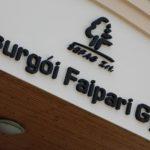 csurgo_fauzem_34