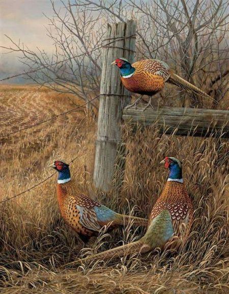 Mi kell ahhoz, hogy ez a kép fogadjon minket az idény elején? - www.artbarbarians.com