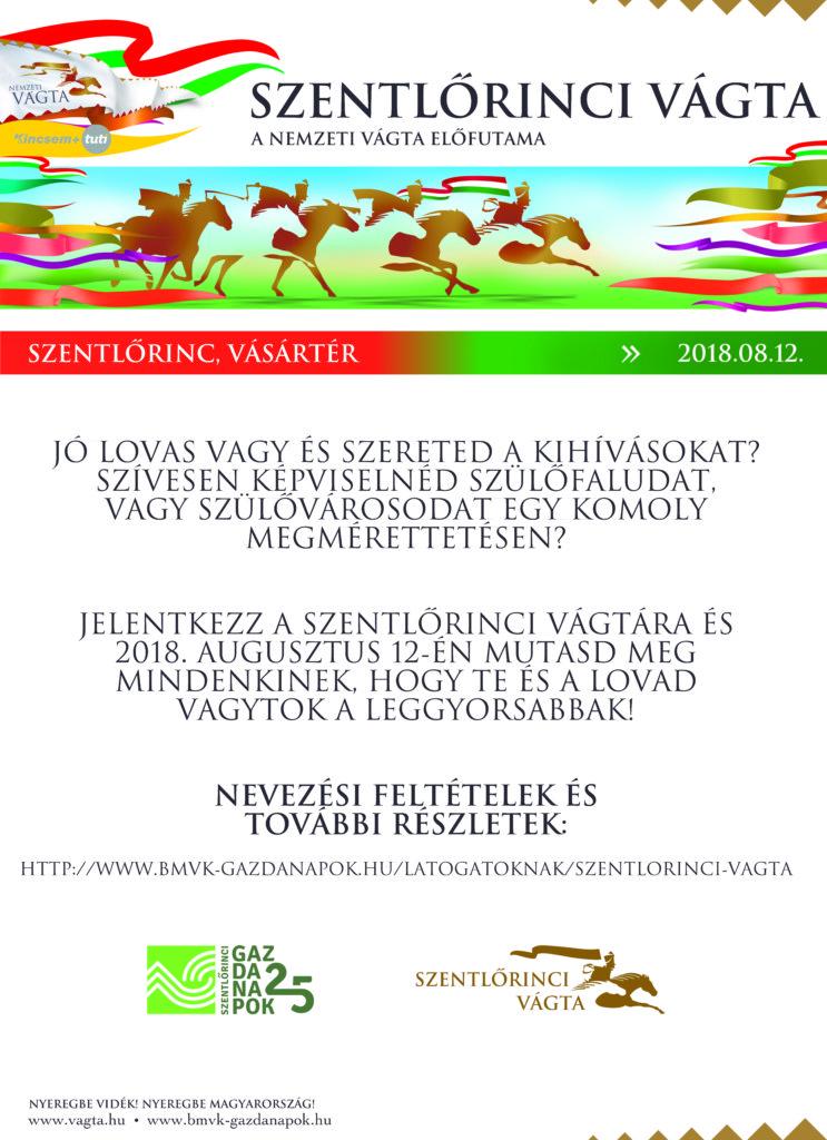 hirdetes-82x113-v3