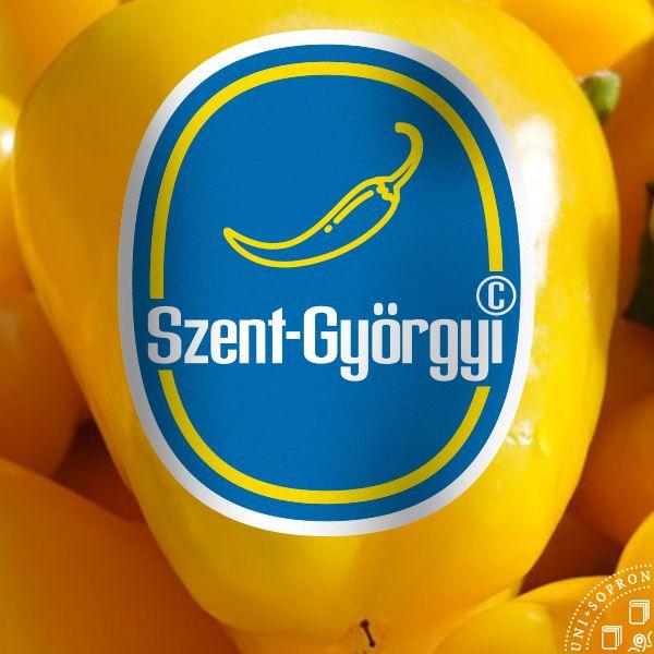 soproni_egyetem_logok_6
