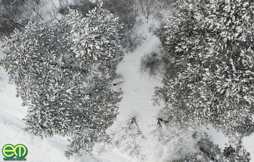 Erdei pihenő a pilisszentiváni Jági-tónál - Fotó: Gribek Dániel