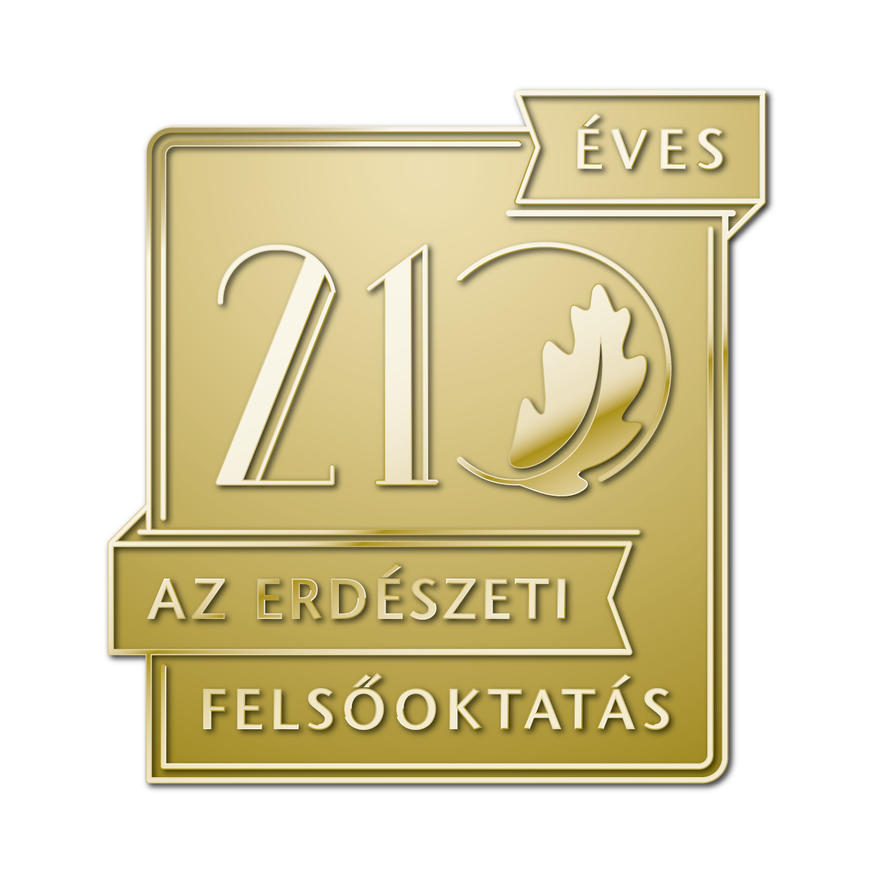210_logo_3D
