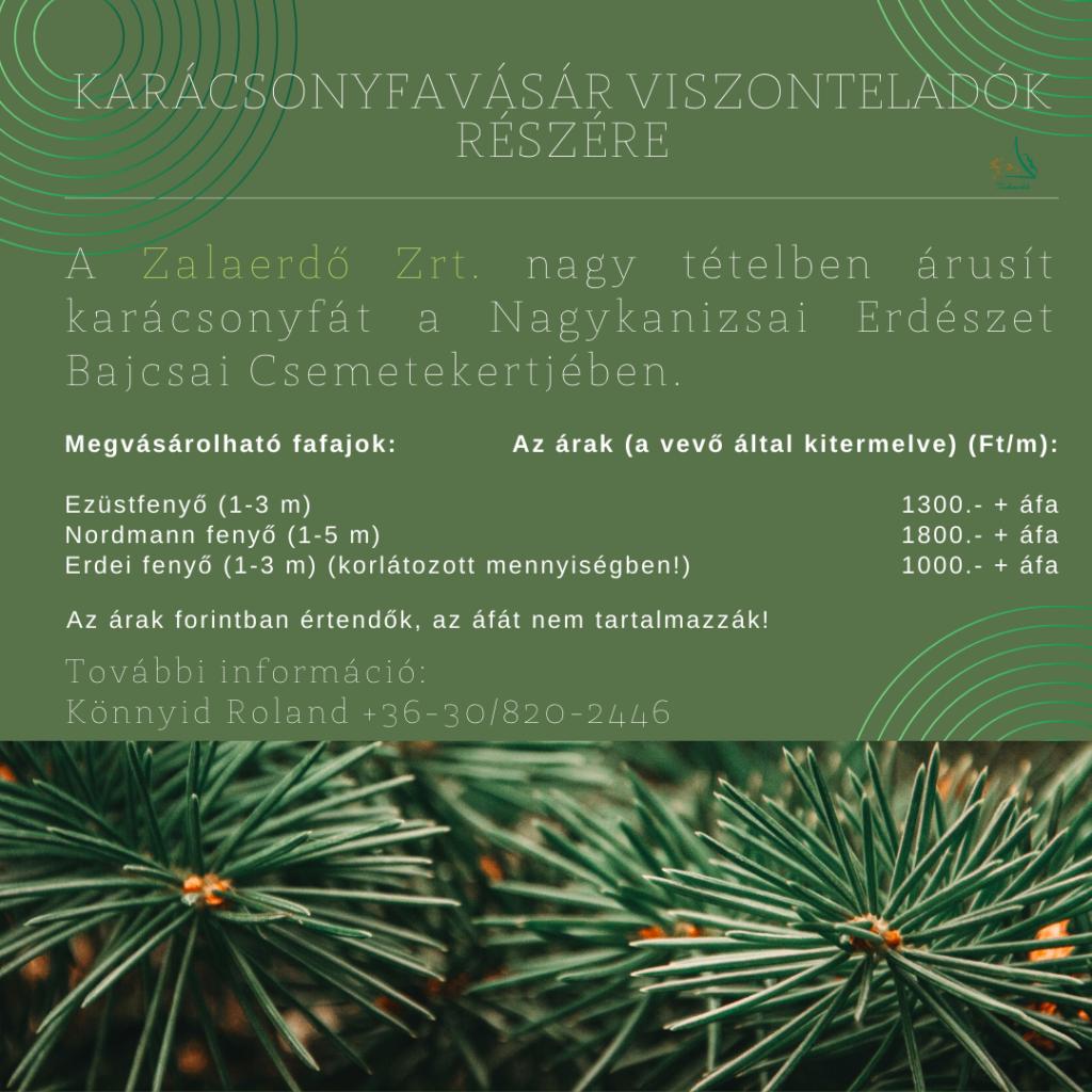 Karácsonyfa-viszonteladóknak