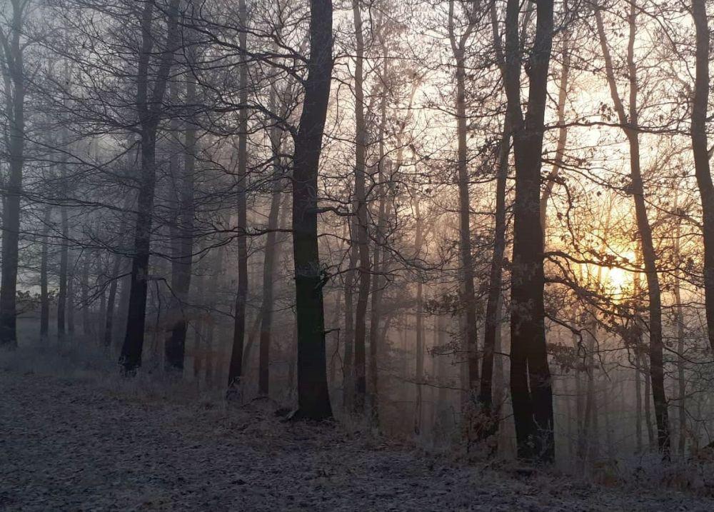 Megérkezett a hideg_Kovács Máté képe
